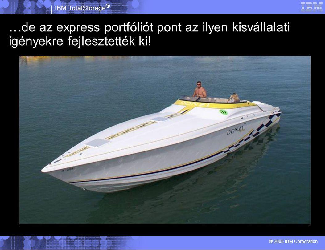 © 2005 IBM Corporation IBM TotalStorage ® Adatmentés egyszerűen? TSM Express és CDP