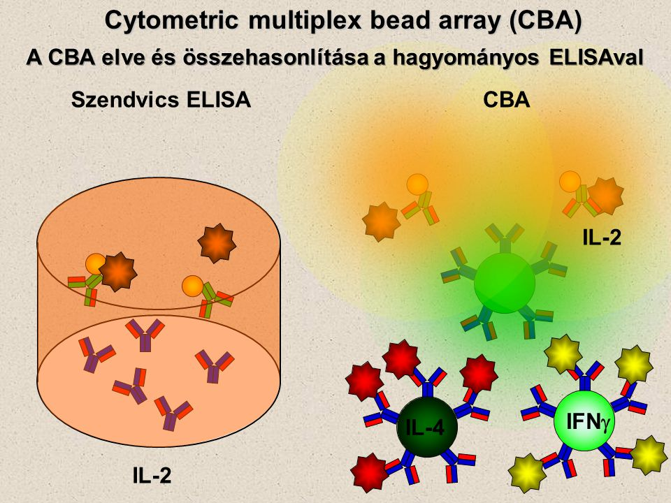 Szendvics ELISACBA Cytometric multiplex bead array (CBA) IL-2 IL-4 IFN 