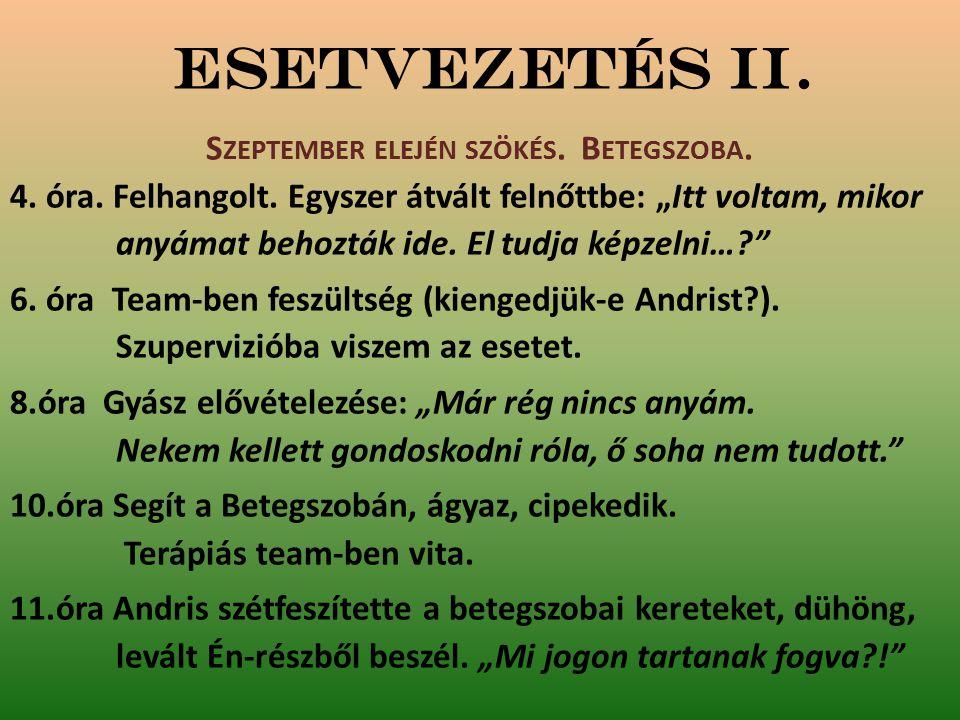 Esetvezetés II. S ZEPTEMBER ELEJÉN SZÖKÉS. B ETEGSZOBA.