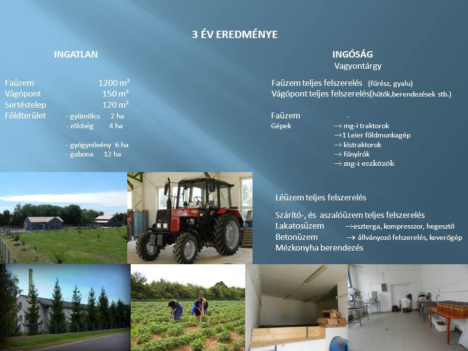 3 ÉV EREDMÉNYE INGATLANINGÓSÁG Vagyontárgy Faüzem1200 m² Faüzem teljes felszerelés (fűrész, gyalu) Vágópont 150 m² Vágópont teljes felszerelés( hűtők,