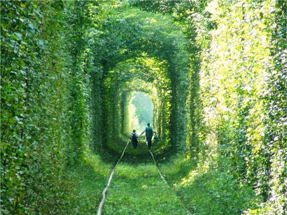 4. A vonat áthaladásának biztosítására kialakított alagút (Ukrajna) Hogyan megy ezeken a görbe síneken a vonat?