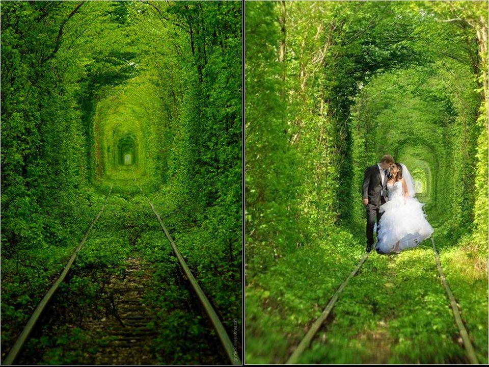 Ezúttal a természet alakult az emberhez, azaz az ember vonatához.