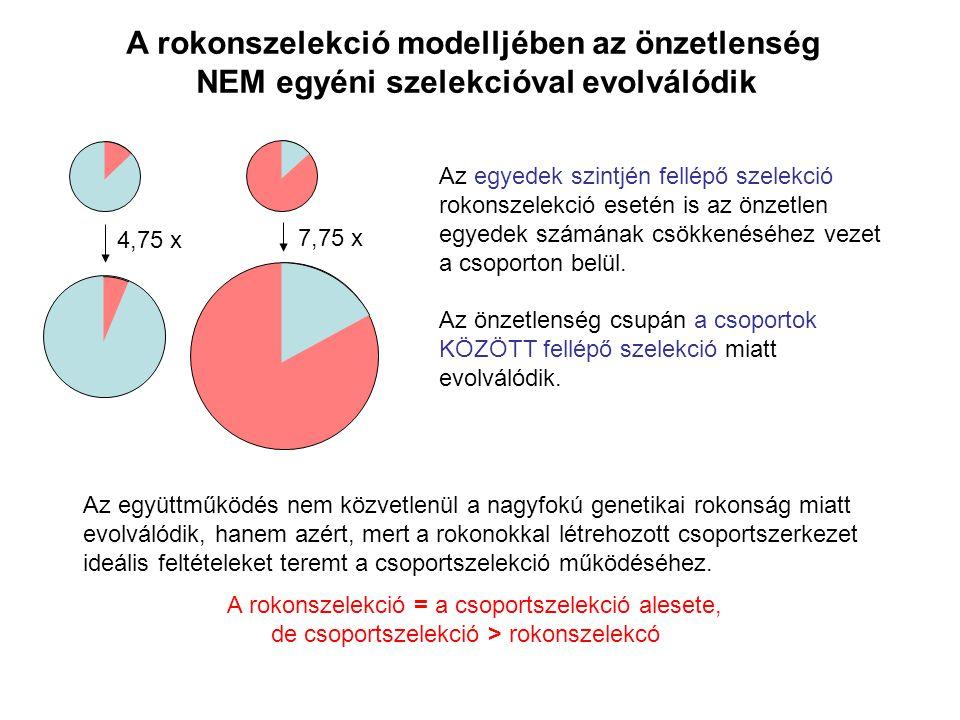A rokonszelekció modelljében az önzetlenség NEM egyéni szelekcióval evolválódik 4,75 x 7,75 x Az egyedek szintjén fellépő szelekció rokonszelekció ese