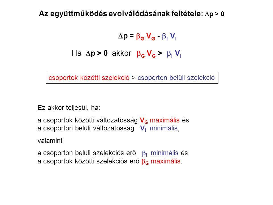 Az együttműködés evolválódásának feltétele:  p > 0  p =  G V G -  I V I Ha  p > 0 akkor  G V G >  I V I csoportok közötti szelekció > csoporton