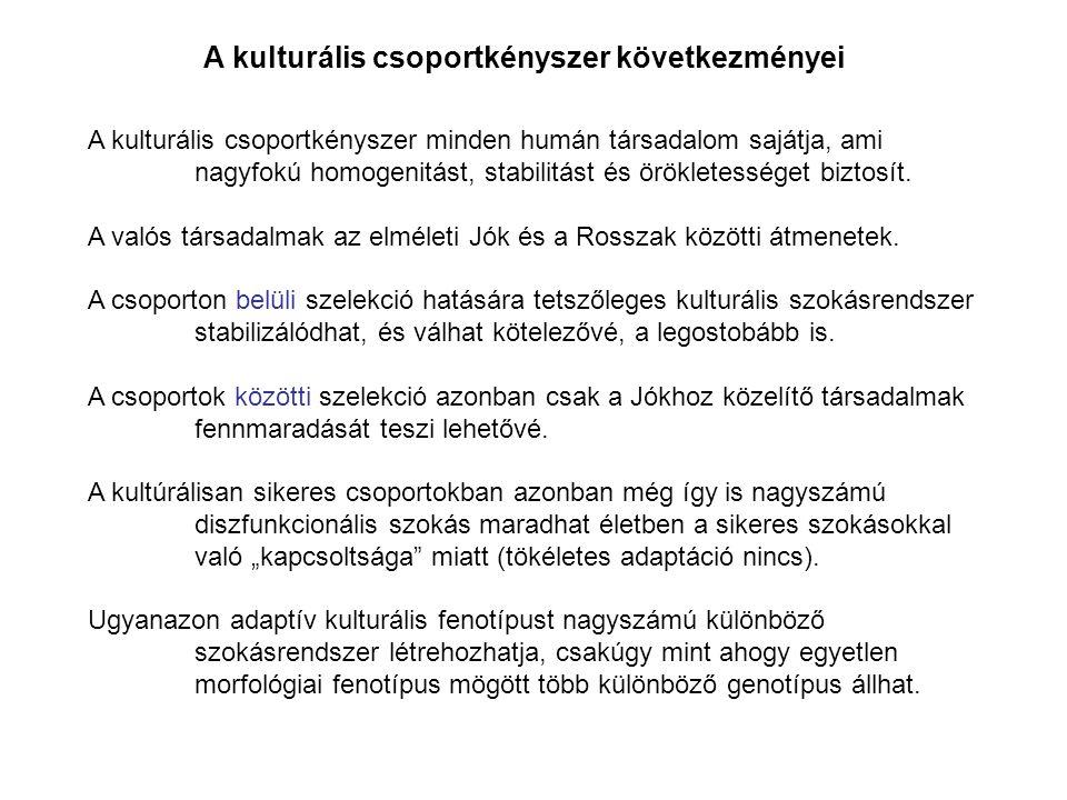 A kulturális csoportkényszer minden humán társadalom sajátja, ami nagyfokú homogenitást, stabilitást és örökletességet biztosít. A valós társadalmak a