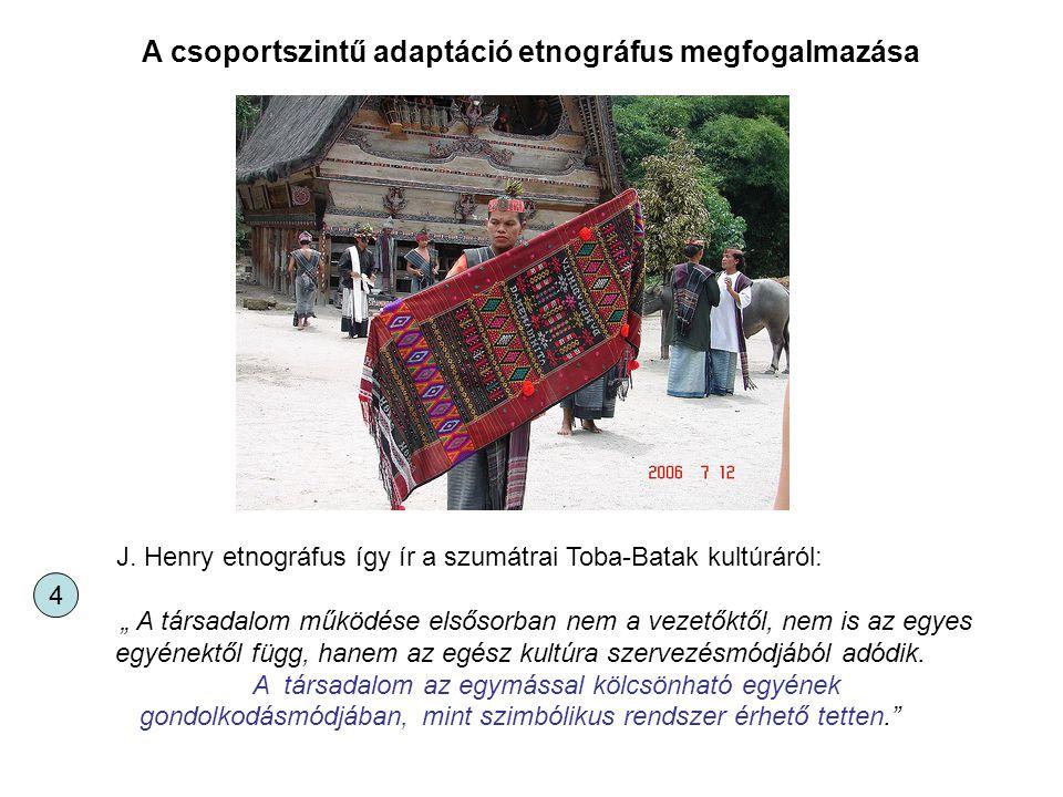 """J. Henry etnográfus így ír a szumátrai Toba-Batak kultúráról: """" A társadalom működése elsősorban nem a vezetőktől, nem is az egyes egyénektől függ, ha"""