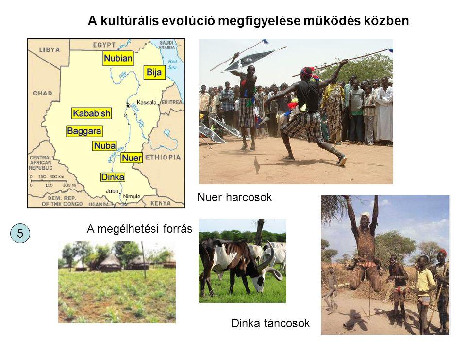 A kultúrális evolúció megfigyelése működés közben Nuer harcosok Dinka táncosok A megélhetési forrás 5