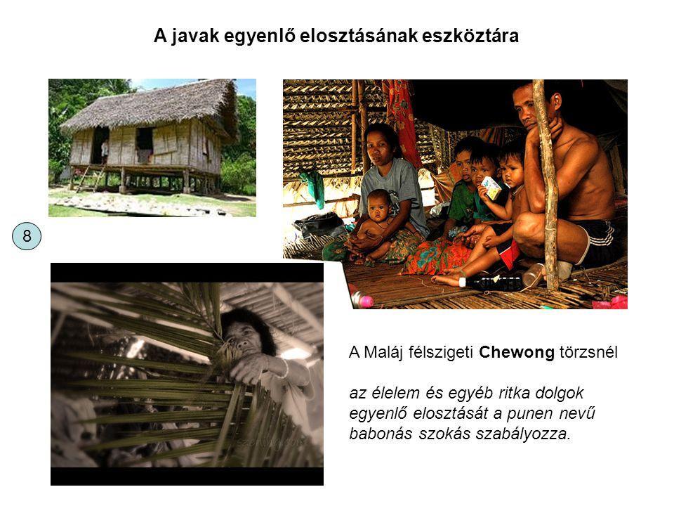 A javak egyenlő elosztásának eszköztára A Maláj félszigeti Chewong törzsnél az élelem és egyéb ritka dolgok egyenlő elosztását a punen nevű babonás sz