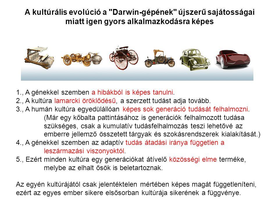 1., A génekkel szemben a hibákból is képes tanulni. 2., A kultúra lamarcki öröklődésű, a szerzett tudást adja tovább. 3., A humán kultúra egyedülállóa