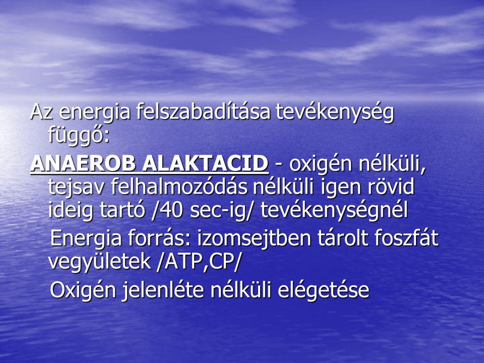 Az energia felszabadítása tevékenység függő: ANAEROB ALAKTACID - oxigén nélküli, tejsav felhalmozódás nélküli igen rövid ideig tartó /40 sec-ig/ tevék