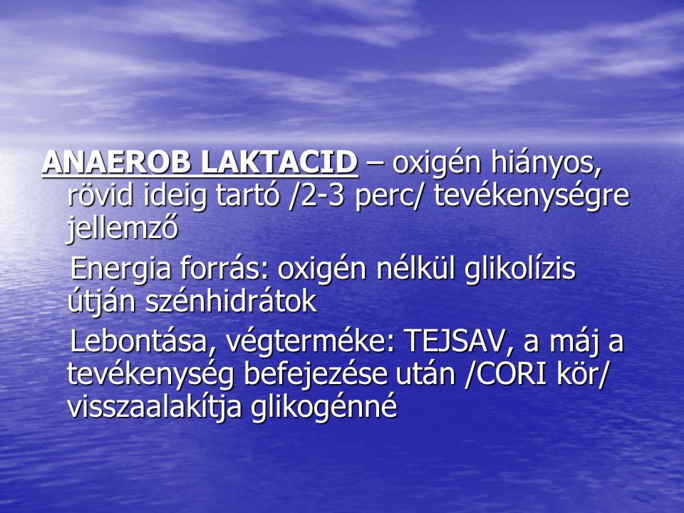 ANAEROB LAKTACID – oxigén hiányos, rövid ideig tartó /2-3 perc/ tevékenységre jellemző Energia forrás: oxigén nélkül glikolízis útján szénhidrátok Ene