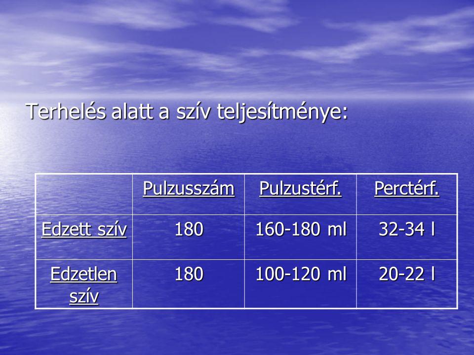 Terhelés alatt a szív teljesítménye: PulzusszámPulzustérf.Perctérf. Edzett szív 180 160-180 ml 32-34 l Edzetlen szív 180 100-120 ml 20-22 l