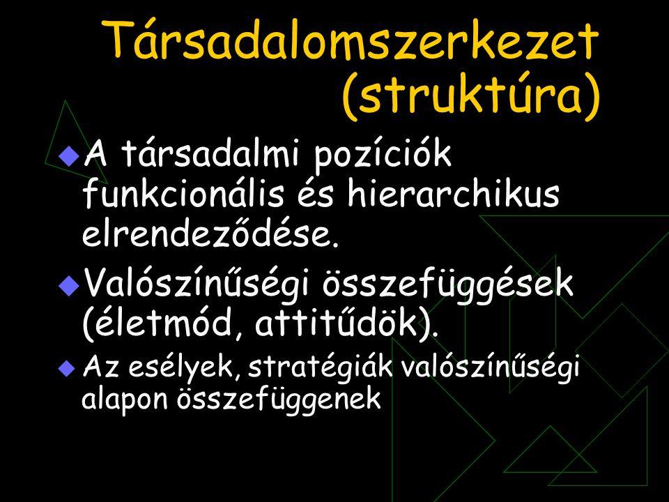 Társadalomszerkezet (struktúra)  A társadalmi pozíciók funkcionális és hierarchikus elrendeződése.  Valószínűségi összefüggések (életmód, attitűdök)