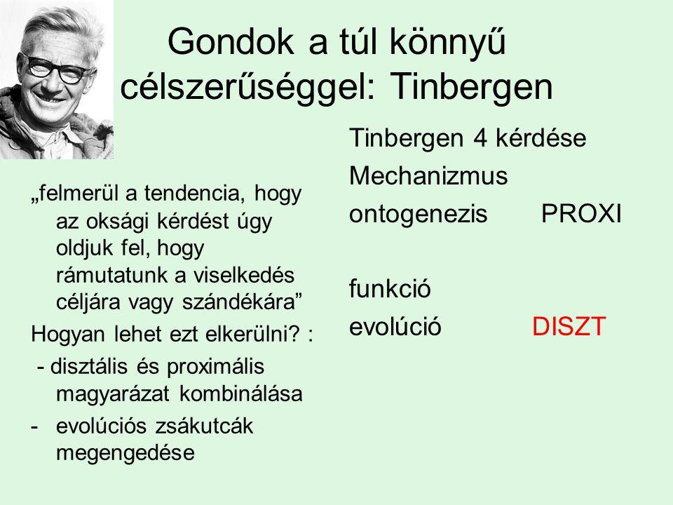 """Gondok a túl könnyű célszerűséggel: Tinbergen """" felmerül a tendencia, hogy az oksági kérdést úgy oldjuk fel, hogy rámutatunk a viselkedés céljára vagy"""