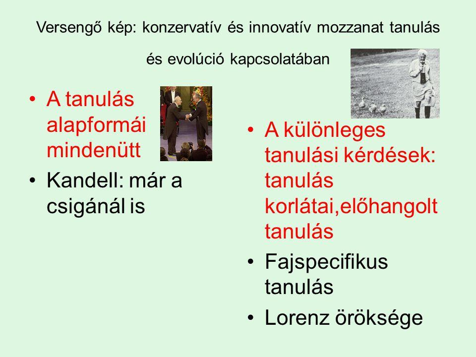 Versengő kép: konzervatív és innovatív mozzanat tanulás és evolúció kapcsolatában A tanulás alapformái mindenütt Kandell: már a csigánál is A különleges tanulási kérdések: tanulás korlátai,előhangolt tanulás Fajspecifikus tanulás Lorenz öröksége