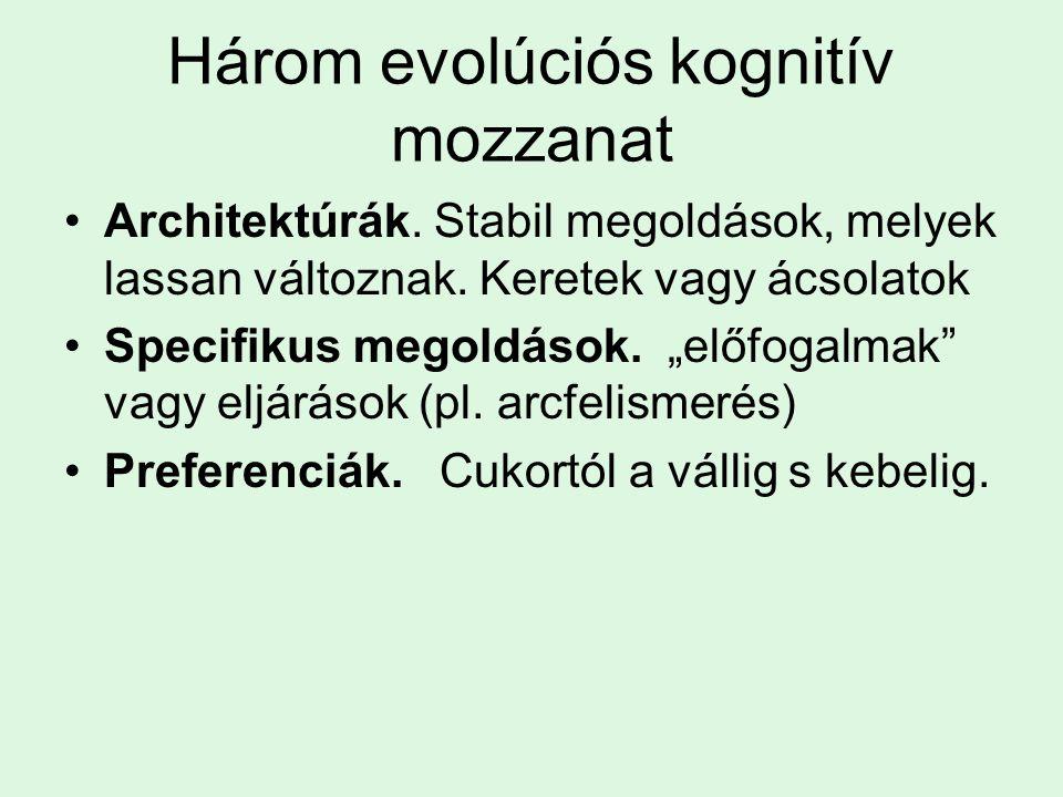 Három evolúciós kognitív mozzanat Architektúrák.Stabil megoldások, melyek lassan változnak.