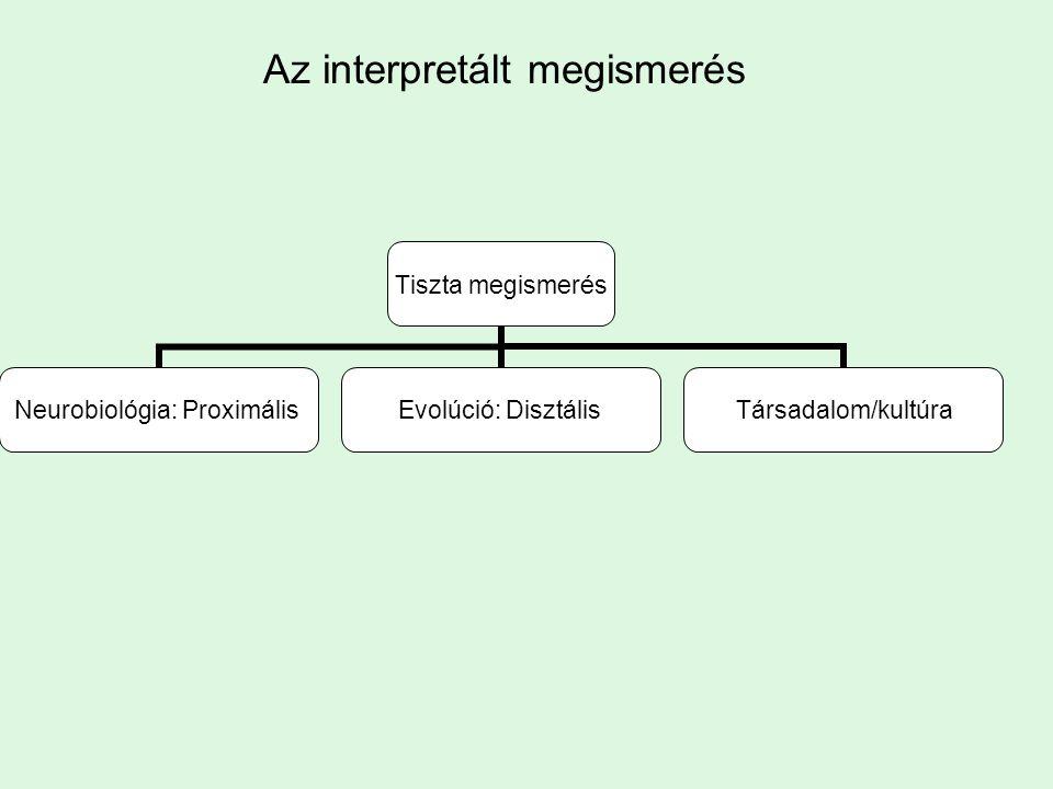 Az interpretált megismerés Tiszta megismerés Neurobiológia: Proximális Evolúció: DisztálisTársadalom/kultúra