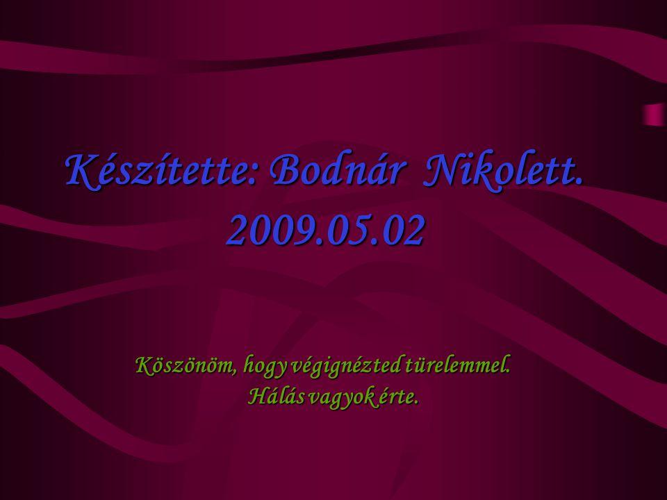 Készítette: Bodnár Nikolett. 2009.05.02 Köszönöm, hogy végignézted türelemmel. Hálás vagyok érte.