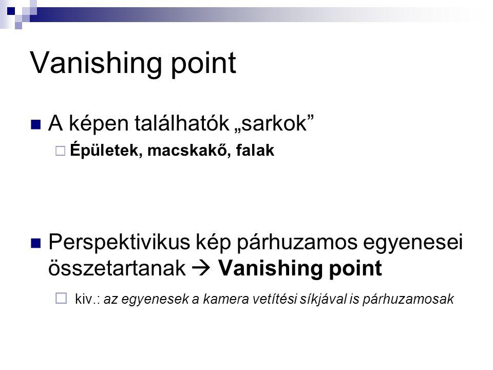 """Vanishing point A képen találhatók """"sarkok  Épületek, macskakő, falak Perspektivikus kép párhuzamos egyenesei összetartanak  Vanishing point  kiv.: az egyenesek a kamera vetítési síkjával is párhuzamosak"""