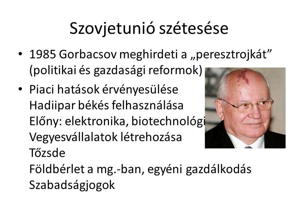 """Szovjetunió szétesése 1985 Gorbacsov meghirdeti a """"peresztrojkát (politikai és gazdasági reformok) Piaci hatások érvényesülése Hadiipar békés felhasználása Előny: elektronika, biotechnológia Vegyesvállalatok létrehozása Tőzsde Földbérlet a mg.-ban, egyéni gazdálkodás Szabadságjogok"""