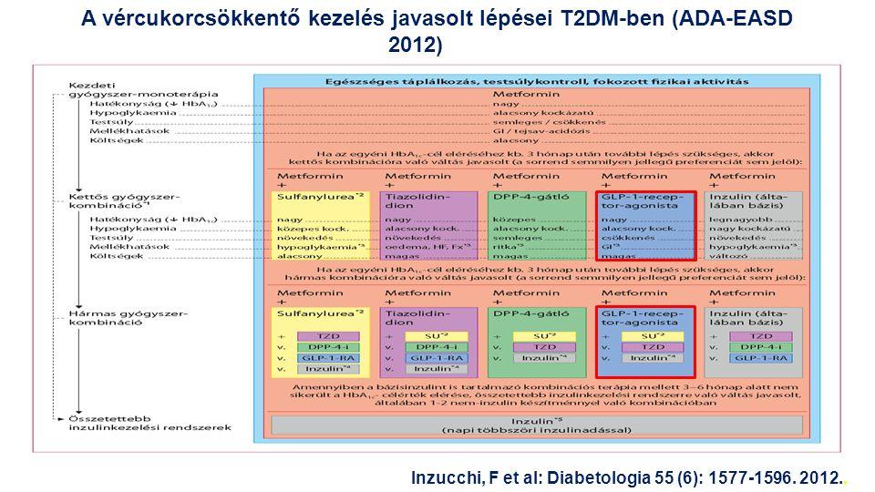 GLP-1 pótlás: cél a farmakológiai szint elérése Liraglutid – napi 1x humán GLP-1-analóg Humán GLP-1 T ½ =1,5–2,1 perc Enzimatikus lebontás (DPP-4) C-16 zsírsav (palmitinsav) Liraglutid Knudsen: J Med Chem 2000;43:1664–9; Degn: Diabetes 2004;53:1187–94; Steensgaard: Diabetes 2008;57(Suppl.