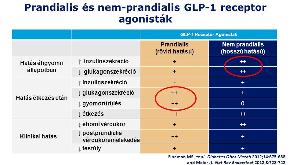 Prandialis és nem-prandialis GLP-1 receptor agonisták GLP-1 Receptor Agonisták Prandialis (rövid hatású) Nem prandialis (hosszú hatású) Hatás éhgyomri állapotban ↑ inzulinszekréció+++ ↓ glukagonszekréció+++ Hatás étkezés után ↑ inzulinszekréció-+ ↓ glukagonszekréció+++ ↓ gyomorürülés++0 ↓ étkezés++ Klinikai hatás ↓ éhomi vércukor+++ ↓ postprandialis vércukoremelekedés +++ ↓ testúly++ Fineman MS, et al.