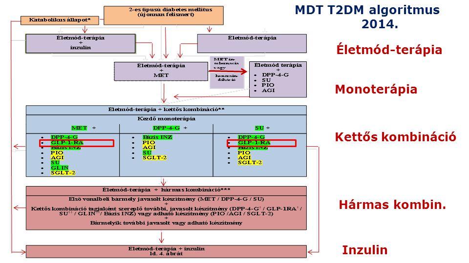 Monoterápia Kettős kombináció Hármas kombin. Inzulin Életmód-terápia MDT T2DM algoritmus 2014.