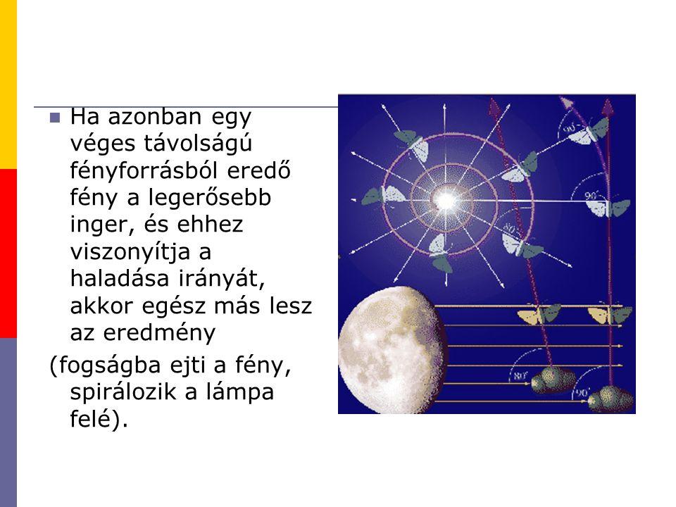 Ha azonban egy véges távolságú fényforrásból eredő fény a legerősebb inger, és ehhez viszonyítja a haladása irányát, akkor egész más lesz az eredmény