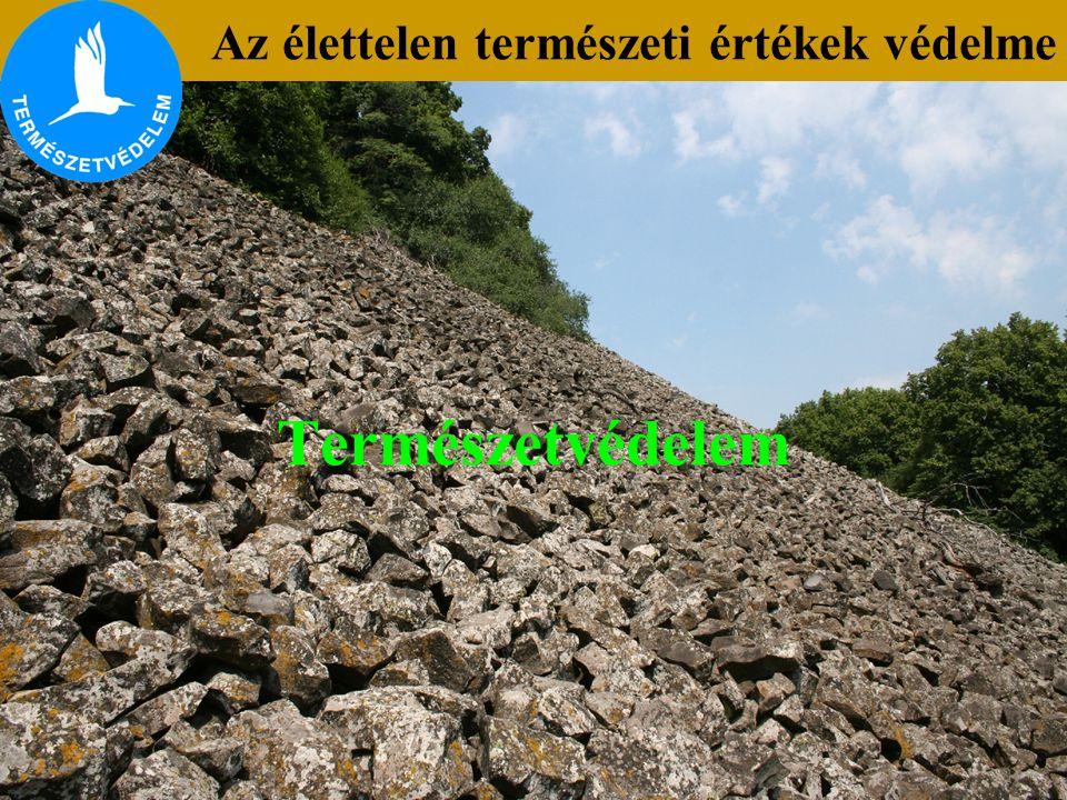 Természetvédelem Az élettelen természeti értékek védelme