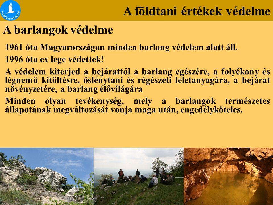 A földtani értékek védelme A barlangok védelme 1961 óta Magyarországon minden barlang védelem alatt áll. 1996 óta ex lege védettek! A védelem kiterjed