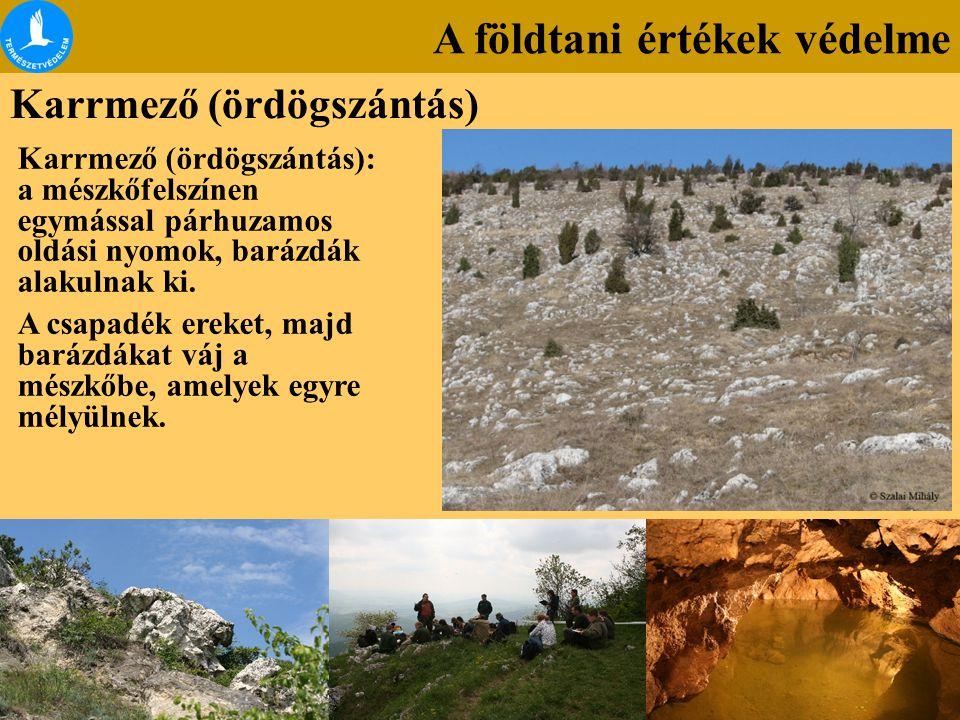A földtani értékek védelme Karrmező (ördögszántás) Karrmező (ördögszántás): a mészkőfelszínen egymással párhuzamos oldási nyomok, barázdák alakulnak k