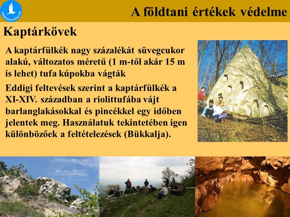 A földtani értékek védelme Kaptárkövek A kaptárfülkék nagy százalékát süvegcukor alakú, változatos méretű (1 m-től akár 15 m is lehet) tufa kúpokba vá