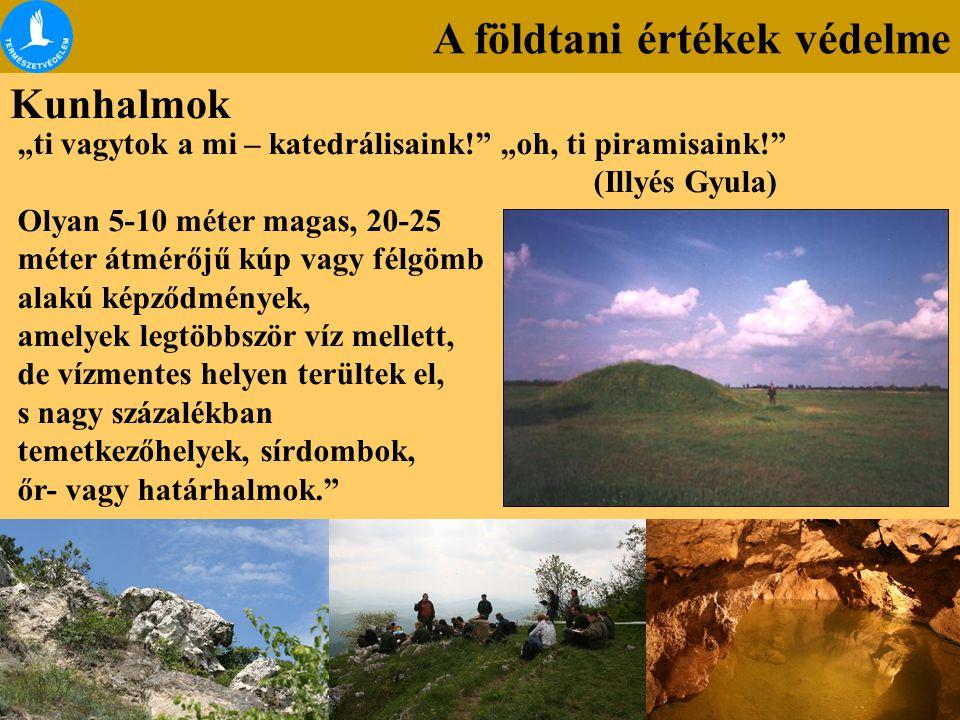"""A földtani értékek védelme Kunhalmok """"ti vagytok a mi – katedrálisaink!"""" """"oh, ti piramisaink!"""" (Illyés Gyula) Olyan 5-10 méter magas, 20-25 méter átmé"""