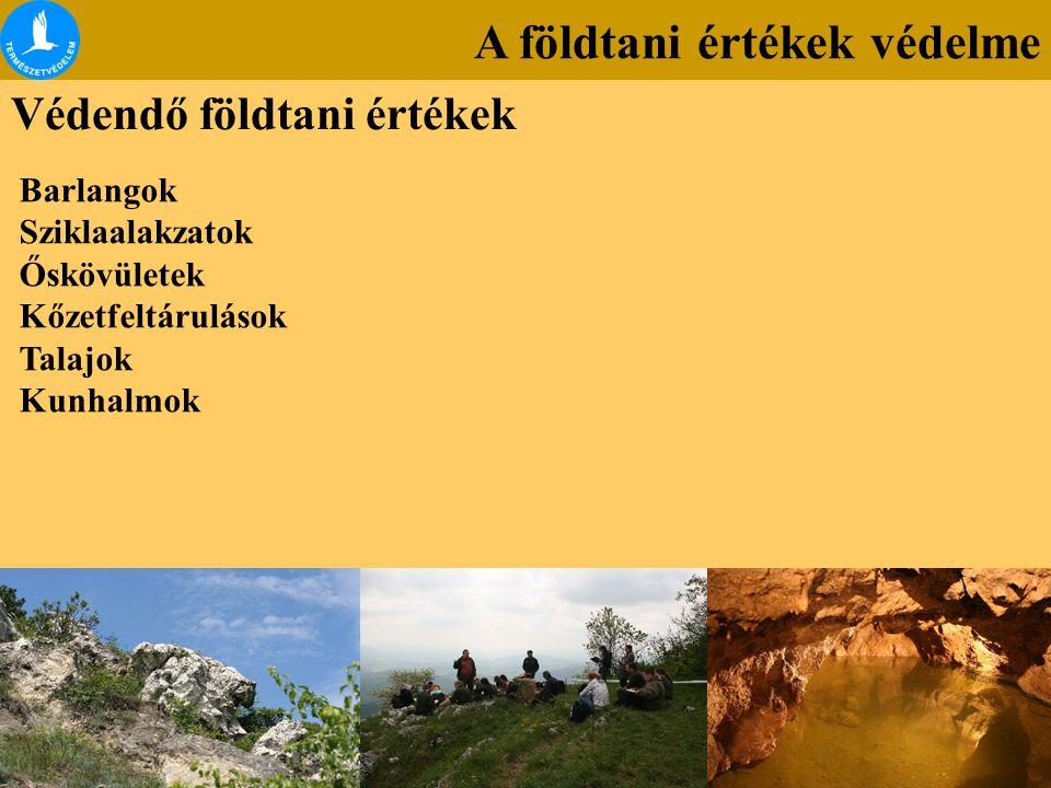 A földtani értékek védelme Védendő földtani értékek Barlangok Sziklaalakzatok Őskövületek Kőzetfeltárulások Talajok Kunhalmok
