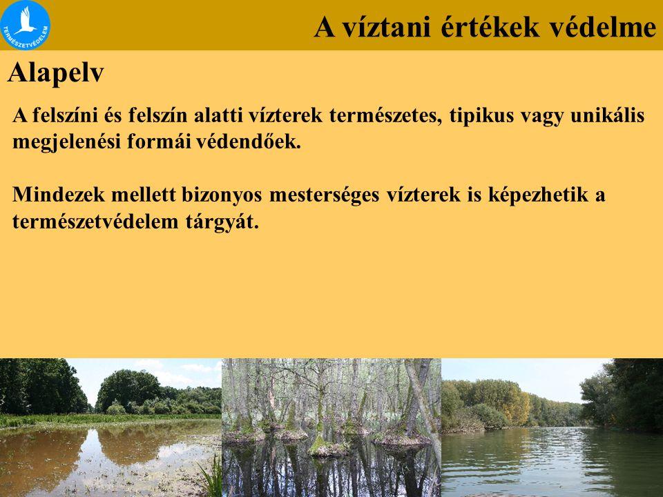 A víztani értékek védelme Alapelv A felszíni és felszín alatti vízterek természetes, tipikus vagy unikális megjelenési formái védendőek. Mindezek mell
