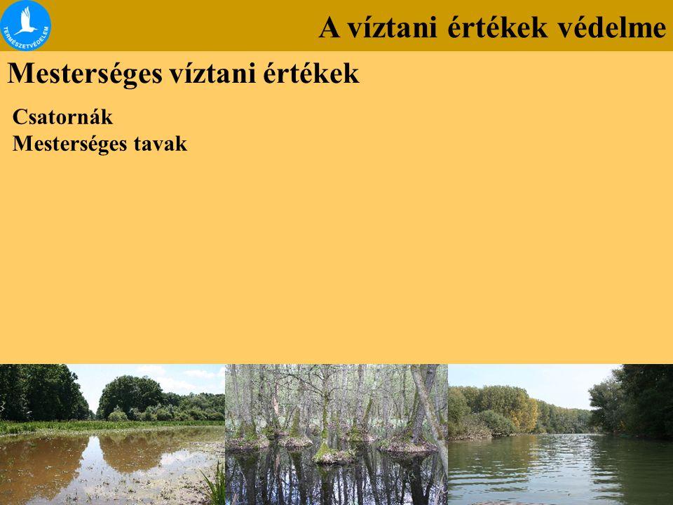 A víztani értékek védelme Mesterséges víztani értékek Csatornák Mesterséges tavak