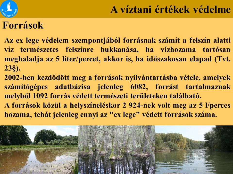 A víztani értékek védelme Források Az ex lege védelem szempontjából forrásnak számít a felszín alatti víz természetes felszínre bukkanása, ha vízhozam