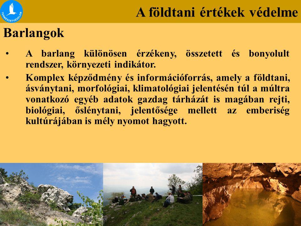 A földtani értékek védelme Barlangok A barlang különösen érzékeny, összetett és bonyolult rendszer, környezeti indikátor. Komplex képződmény és inform
