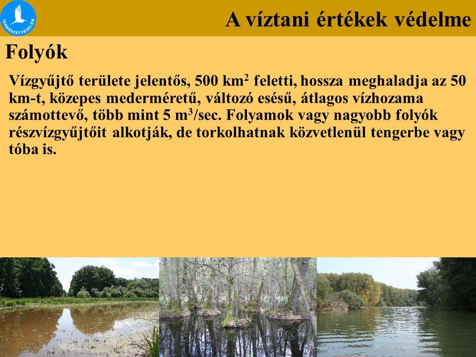A víztani értékek védelme Folyók Vízgyűjtő területe jelentős, 500 km 2 feletti, hossza meghaladja az 50 km-t, közepes mederméretű, változó esésű, átla