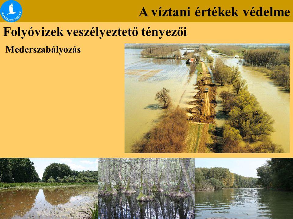 A víztani értékek védelme Folyóvizek veszélyeztető tényezői Mederszabályozás