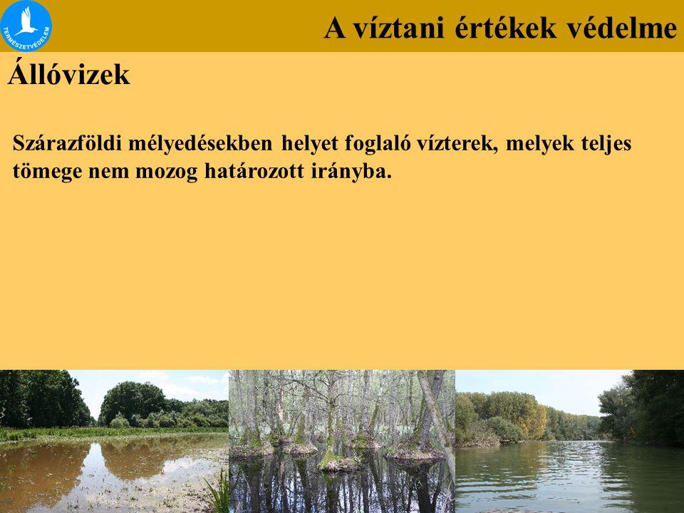 A víztani értékek védelme Állóvizek Szárazföldi mélyedésekben helyet foglaló vízterek, melyek teljes tömege nem mozog határozott irányba.