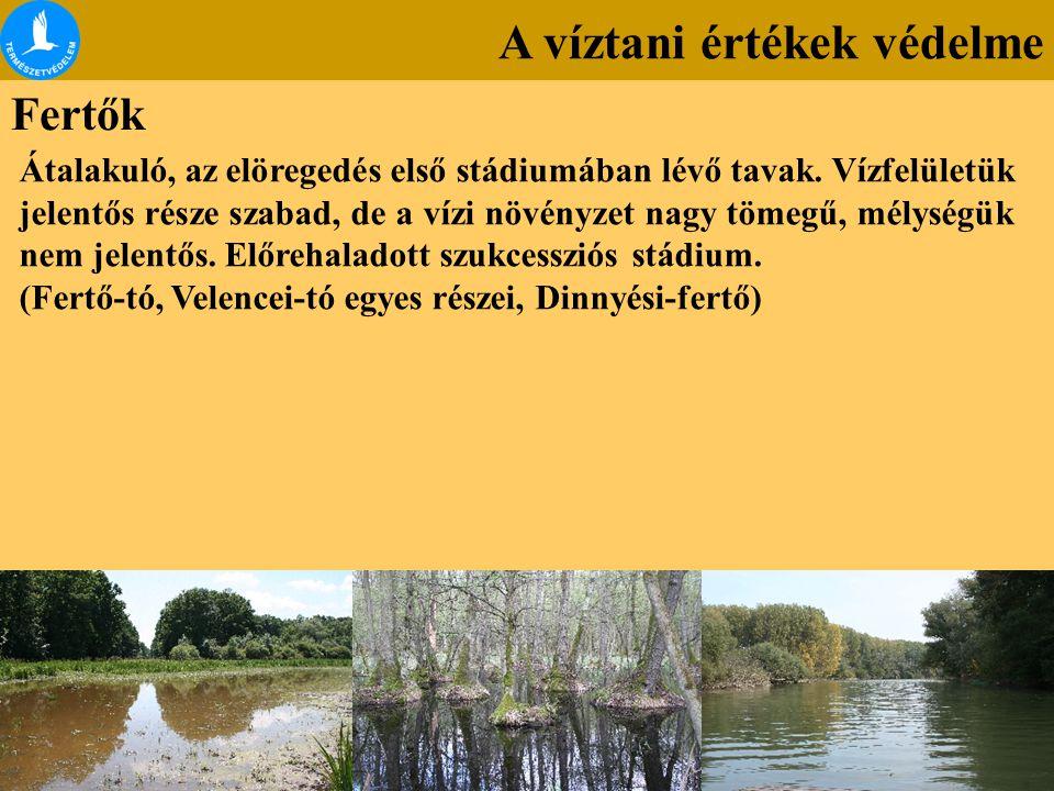 A víztani értékek védelme Fertők Átalakuló, az elöregedés első stádiumában lévő tavak. Vízfelületük jelentős része szabad, de a vízi növényzet nagy tö