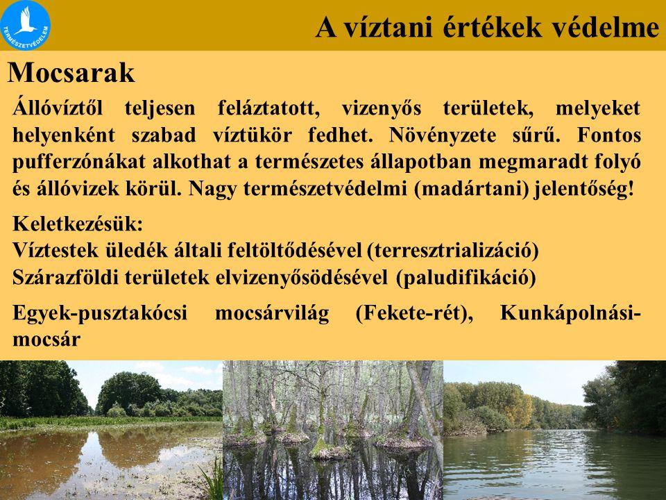 A víztani értékek védelme Mocsarak Állóvíztől teljesen feláztatott, vizenyős területek, melyeket helyenként szabad víztükör fedhet. Növényzete sűrű. F