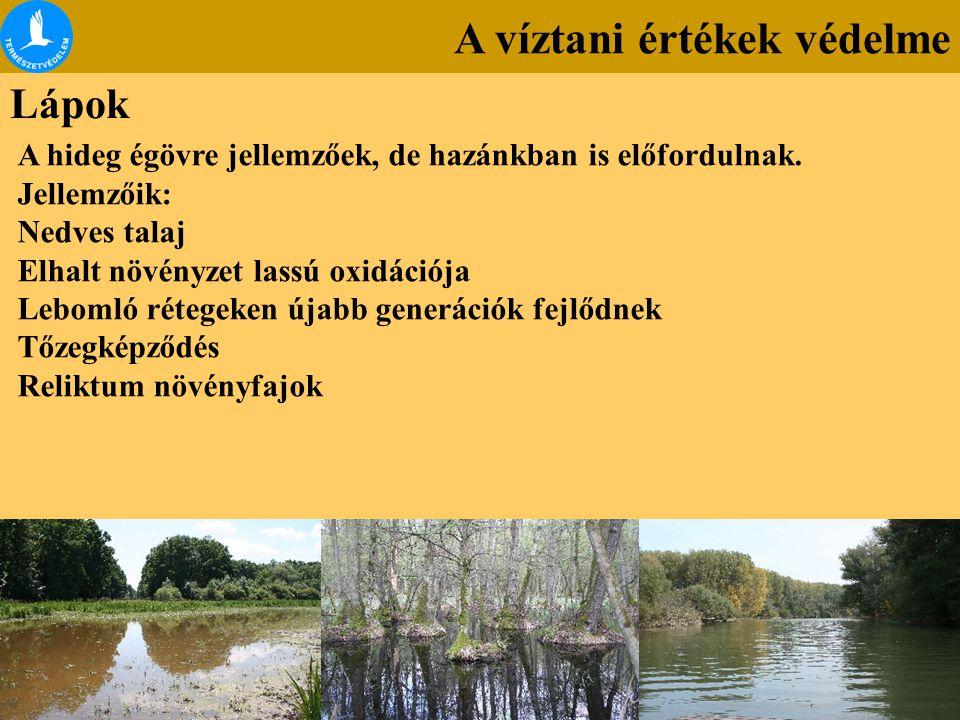A víztani értékek védelme Lápok A hideg égövre jellemzőek, de hazánkban is előfordulnak. Jellemzőik: Nedves talaj Elhalt növényzet lassú oxidációja Le