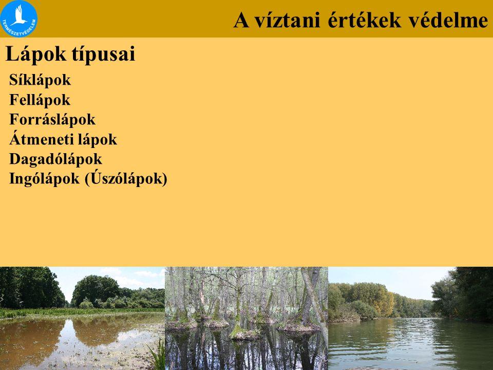 A víztani értékek védelme Lápok típusai Síklápok Fellápok Forráslápok Átmeneti lápok Dagadólápok Ingólápok (Úszólápok)