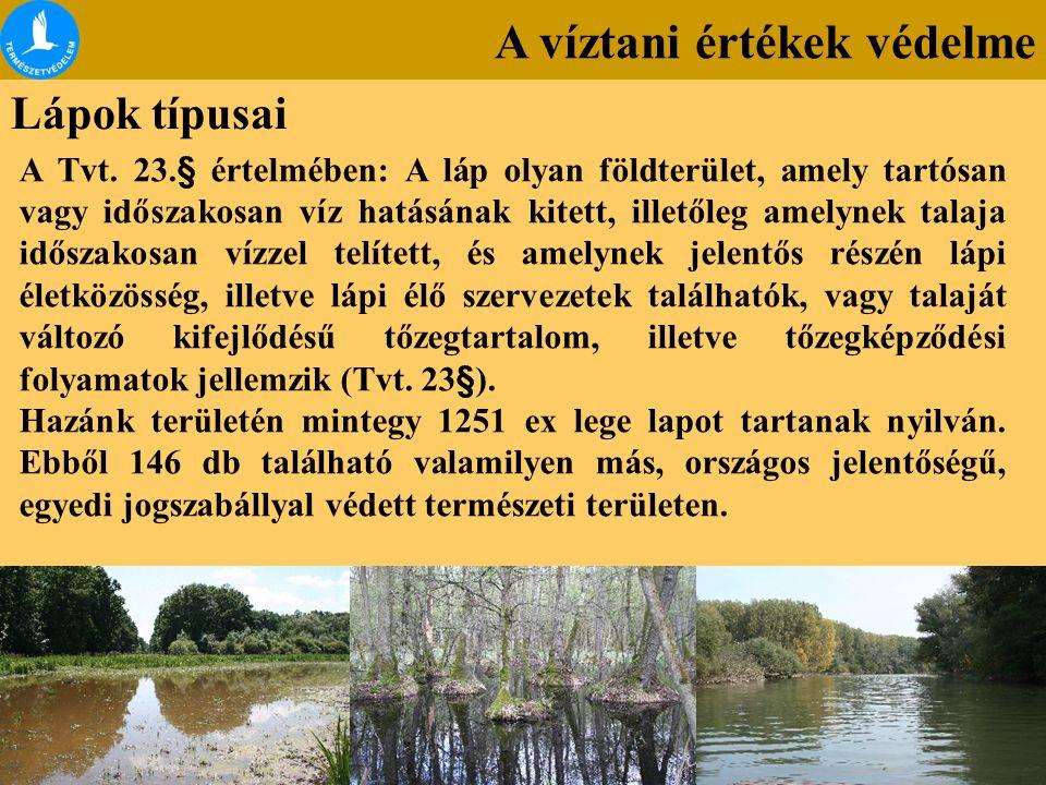 A víztani értékek védelme Lápok típusai A Tvt. 23.§ értelmében: A láp olyan földterület, amely tartósan vagy időszakosan víz hatásának kitett, illetől