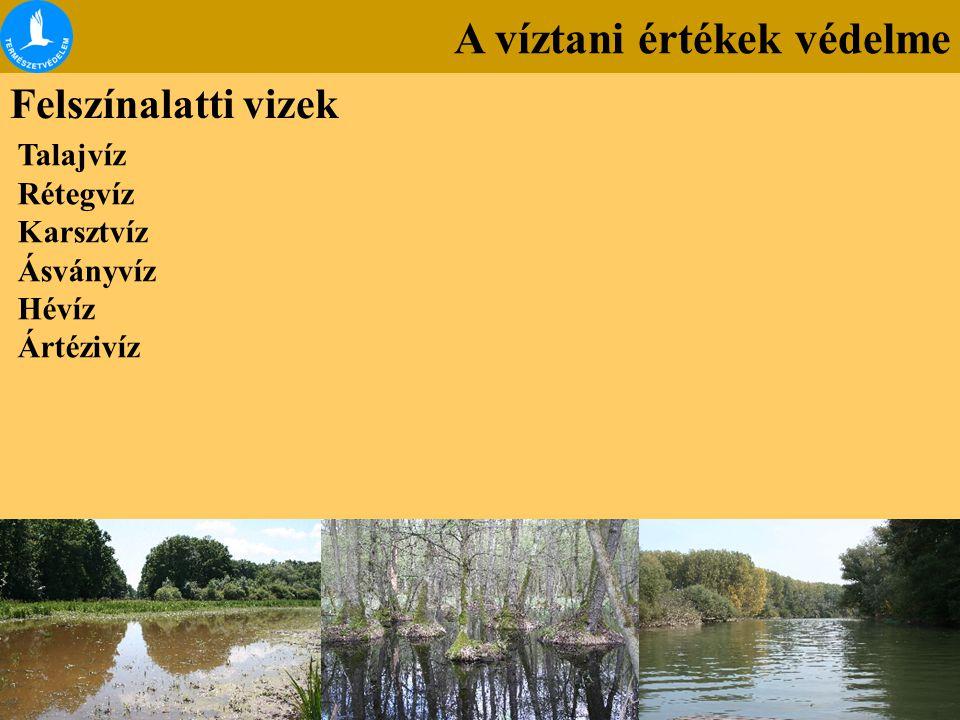 A víztani értékek védelme Felszínalatti vizek Talajvíz Rétegvíz Karsztvíz Ásványvíz Hévíz Ártézivíz