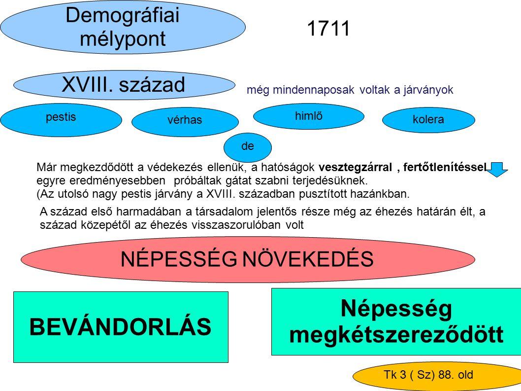 Népesség megkétszereződött BEVÁNDORLÁS NÉPESSÉG NÖVEKEDÉS Demográfiai mélypont XVIII. század még mindennaposak voltak a járványok Már megkezdődött a v