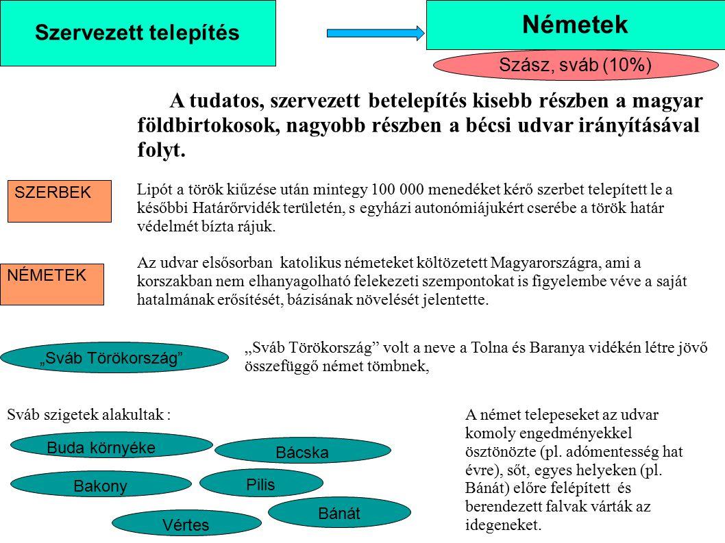 Szervezett telepítés Németek Szász, sváb (10%) A tudatos, szervezett betelepítés kisebb részben a magyar földbirtokosok, nagyobb részben a bécsi udvar