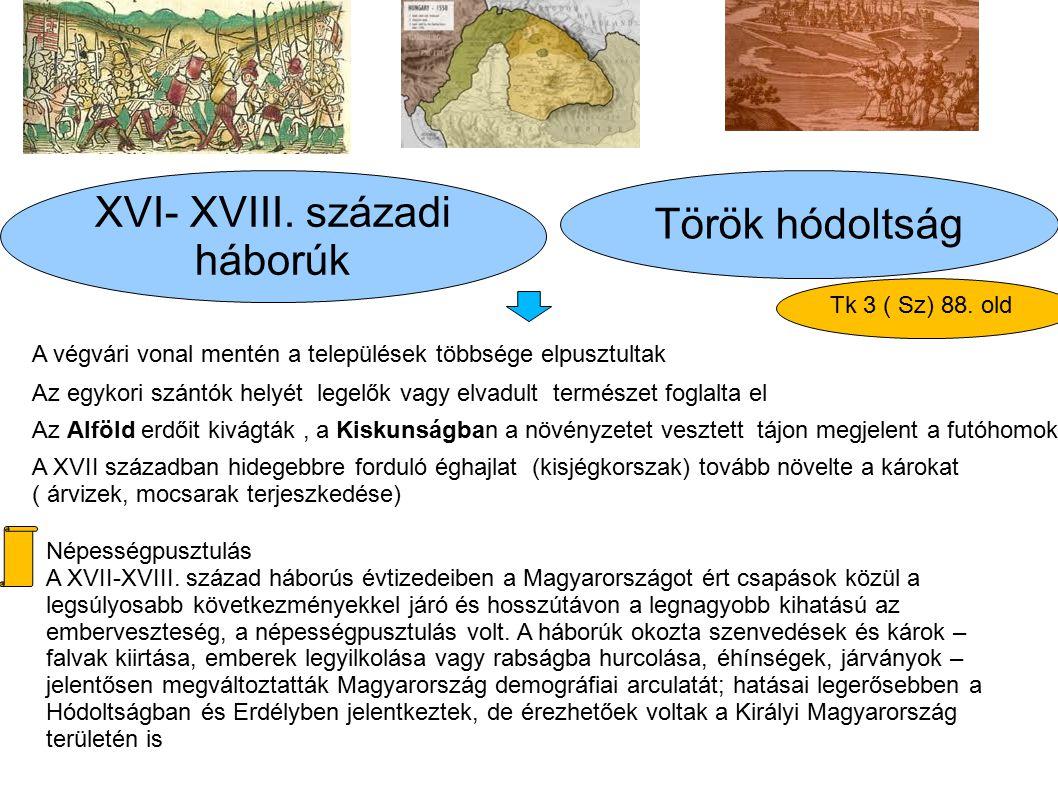 Török hódoltság XVI- XVIII. századi háborúk A végvári vonal mentén a települések többsége elpusztultak Az egykori szántók helyét legelők vagy elvadult